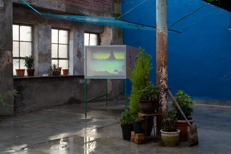 Garden2 - Cinema for Basil, Mirko Canesi, Contra, Garden, 2018 at David Dale Gallery, Glasgow