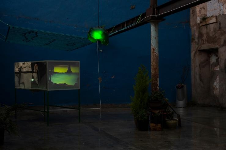 Garden8 - Cinema for Basil, Mirko Canesi, Contra, Garden, 2018 at David Dale Gallery, Glasgow
